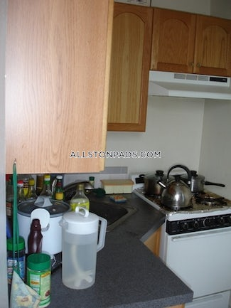 allston-by-far-the-best-1-bed-apt-available-in-allston-boston-1670-475726