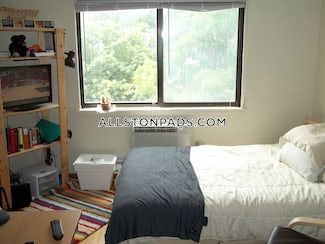 allston-amazing-opportunity-on-a-spacious-studio-on-commonwealth-ave-all-utilities-included-boston-1750-541197