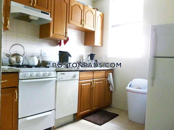 allstonbrighton-border-apartment-for-rent-1-bedroom-1-bath-boston-1750-52387