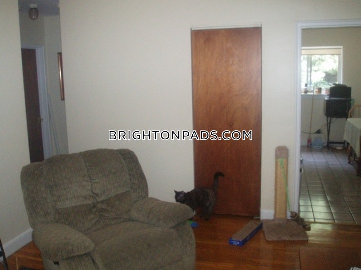Selkirk Rd. BOSTON - BRIGHTON - CLEVELAND CIRCLE picture 9