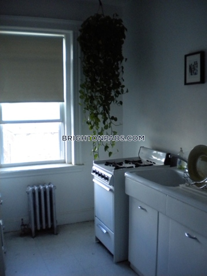 allstonbrighton-border-apartment-for-rent-1-bedroom-1-bath-boston-2050-72813