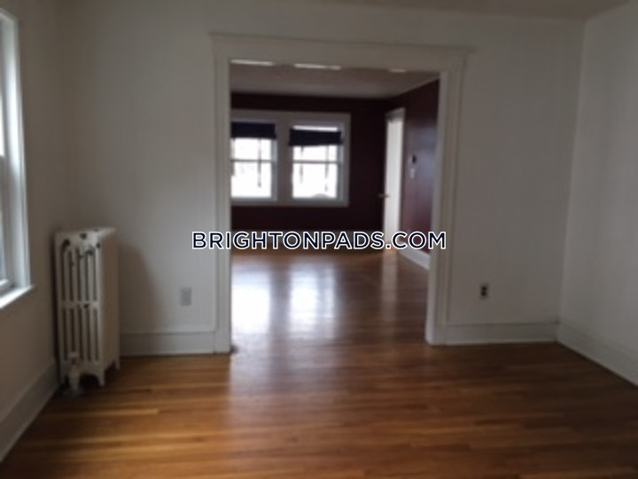 Larch St. Boston picture 8