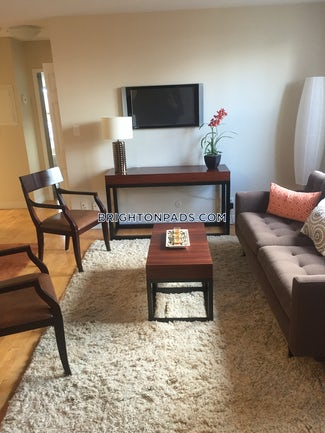 brighton-apartment-for-rent-2-bedrooms-1-bath-boston-2632-484172
