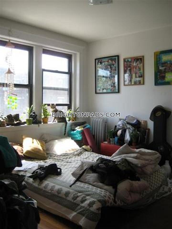 brighton-apartment-for-rent-4-bedrooms-2-baths-boston-3250-486706