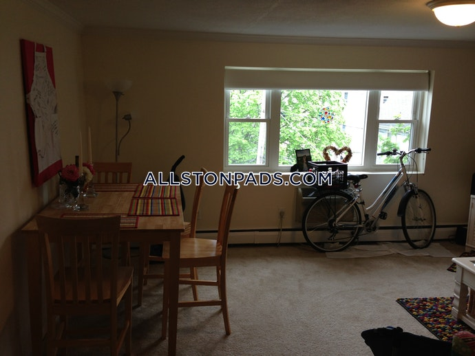 BOSTON - LOWER ALLSTON - 2 Beds, 1 Baths