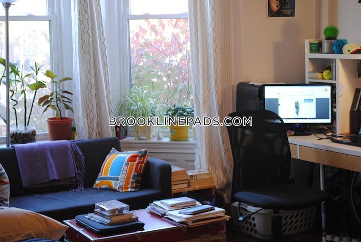 brookline-apartment-for-rent-studio-1-bath-longwood-area-1895-484094