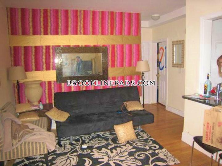 brookline-apartment-for-rent-4-bedrooms-15-baths-boston-university-4975-541514