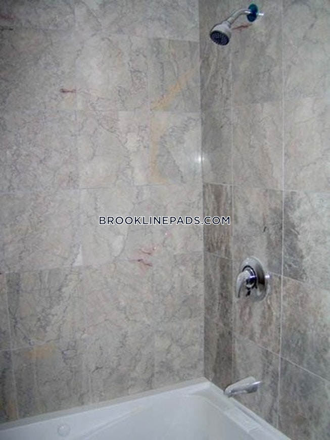 BROOKLINE- BROOKLINE VILLAGE - $3,550 /mo