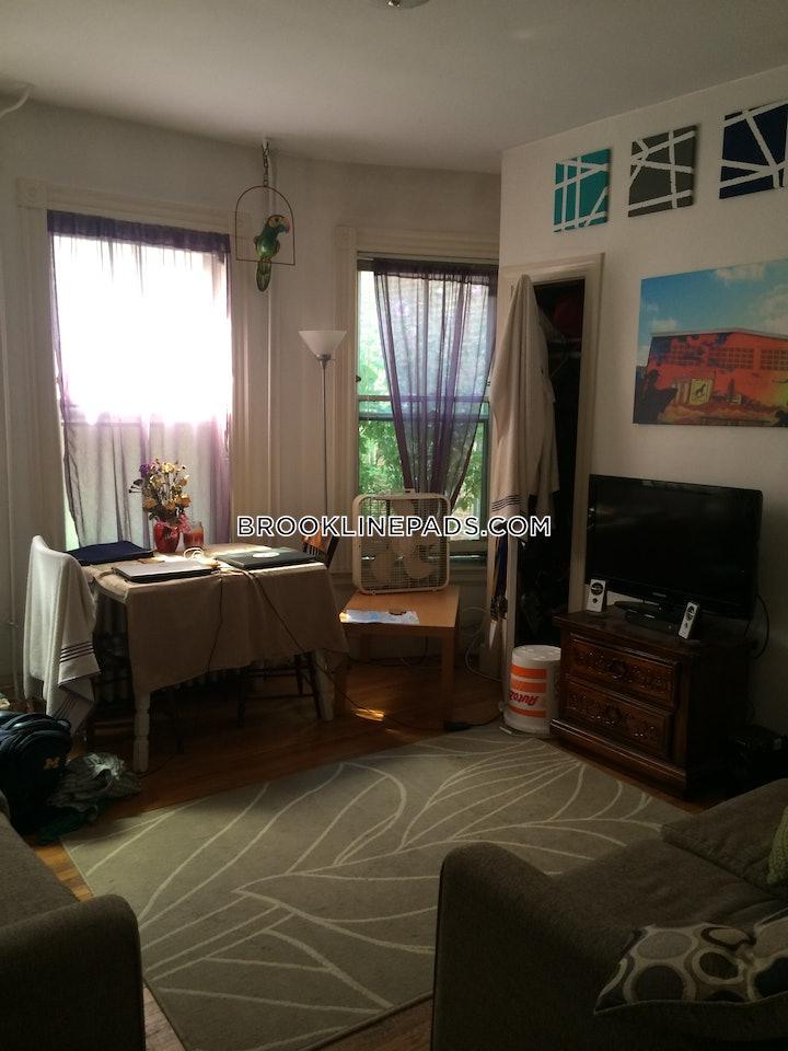 brookline-apartment-for-rent-1-bedroom-1-bath-brookline-village-2000-507551