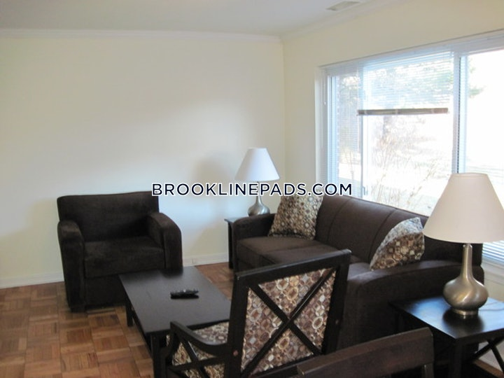 brookline-apartment-for-rent-1-bedroom-15-baths-chestnut-hill-2740-488448