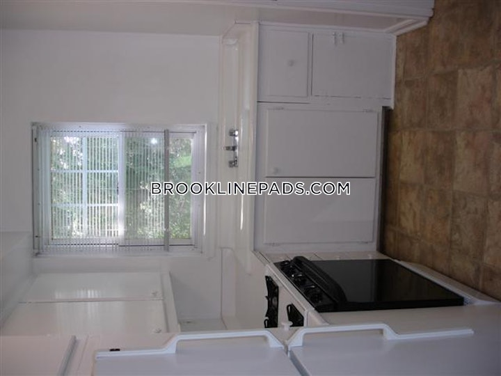 brookline-apartment-for-rent-1-bedroom-1-bath-chestnut-hill-2600-54518
