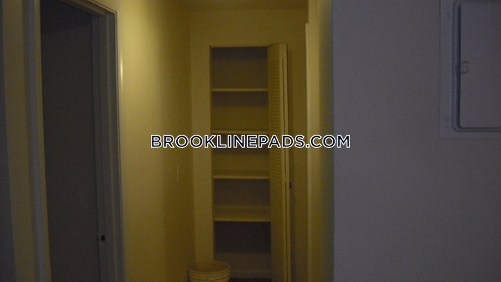 brookline-deal-alert-spacious-1-bed-1-bath-apartment-in-babcock-st-coolidge-corner-2550-596039