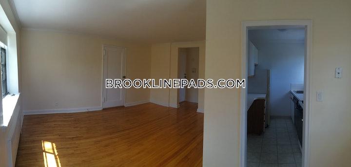 brookline-apartment-for-rent-1-bedroom-1-bath-coolidge-corner-2650-48608