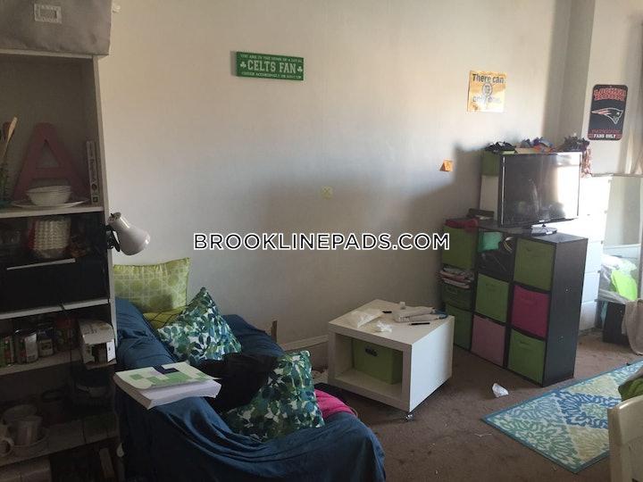 brookline-apartment-for-rent-studio-1-bath-longwood-area-1845-509168