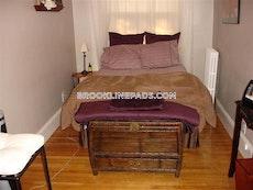 nice-1-bed-1-bath-unit-on-beacon-st-in-brookline-near-longwood-ave-brookline-longwood-area-1810-463437