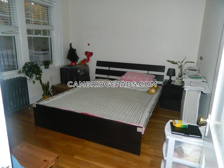cambridge-apartment-for-rent-1-bedroom-1-bath-harvard-square-2700-501286