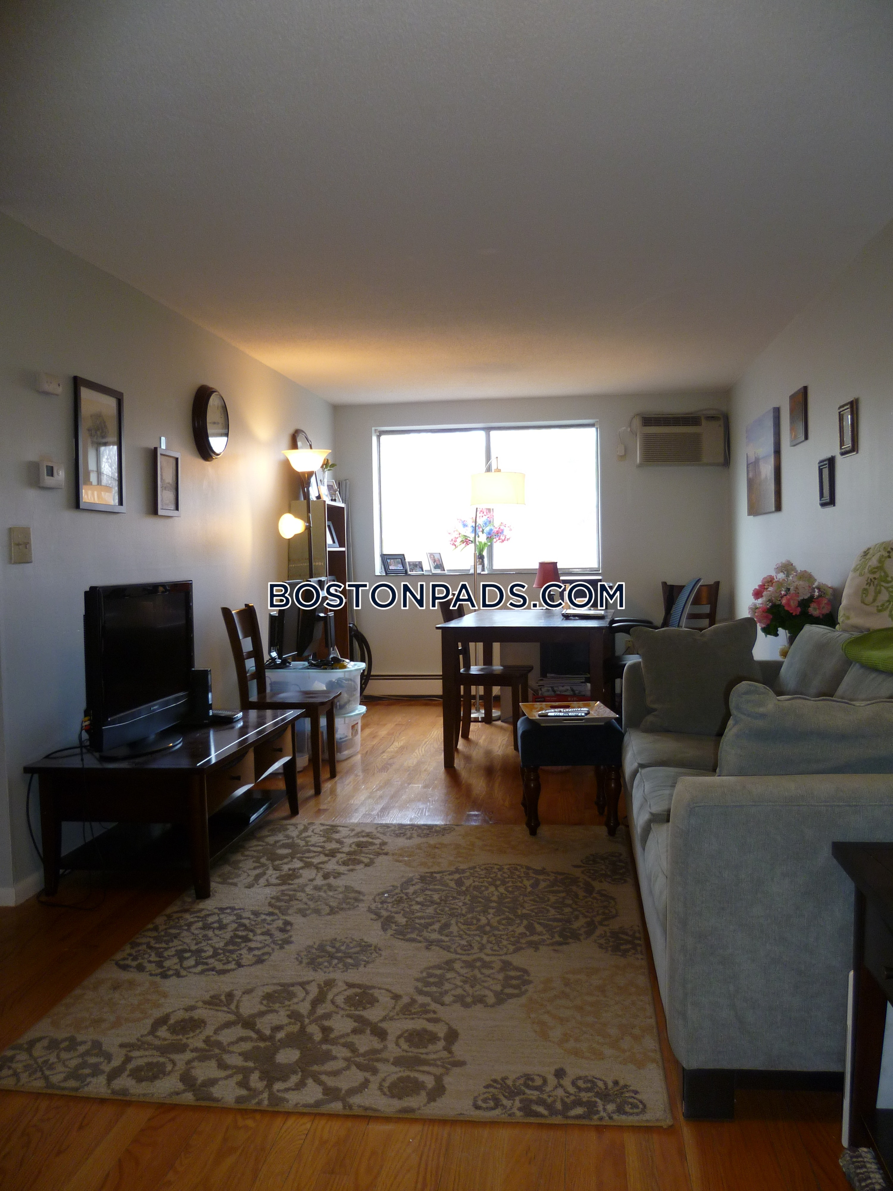1-bed-1-bath-somerville-magounball-square-2300-429556