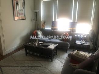 allston-apartment-for-rent-1-bedroom-1-bath-boston-2015-496098