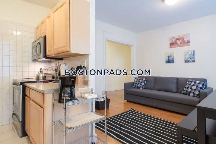 allstonbrighton-border-2-beds-1-bath-boston-2495-489386