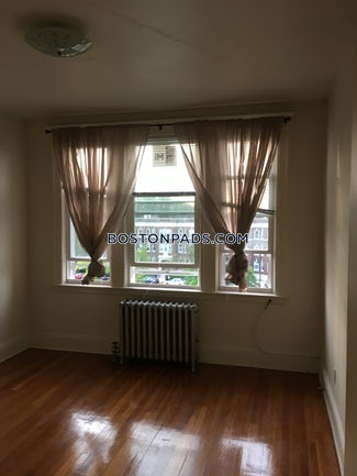 allstonbrighton-border-apartment-for-rent-1-bedroom-1-bath-boston-1725-507003