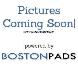 allstonbrighton-border-apartment-for-rent-4-bedrooms-2-baths-boston-5000-523321