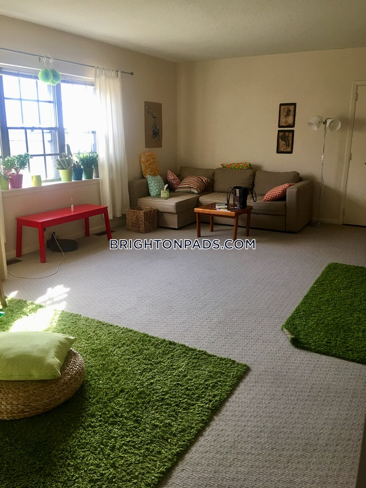 brighton-apartment-for-rent-2-bedrooms-1-bath-boston-2300-492463