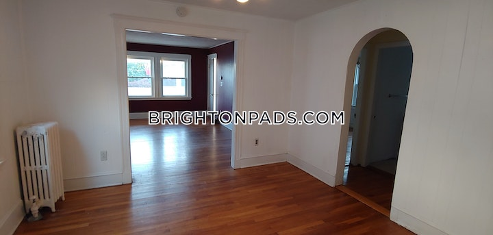 Larch St. Boston picture 12