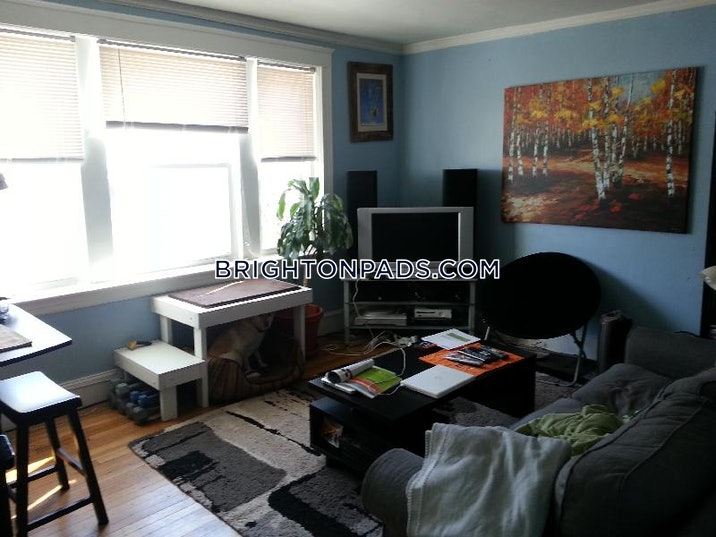 brighton-apartment-for-rent-2-bedrooms-1-bath-boston-2600-486803