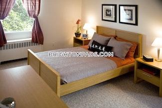 1-bed-1-bath-boston-brighton-washington-st-allston-st-2189-464334