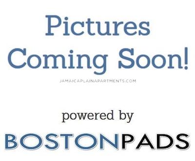 Olmstead St. BOSTON - JAMAICA PLAIN - STONY BROOK