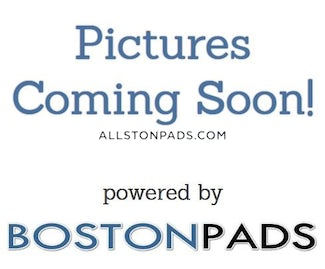 lower-allston-apartment-for-rent-3-bedrooms-1-bath-boston-2800-491571