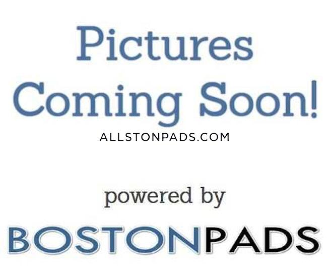 BOSTON - LOWER ALLSTON - $3,200 /mo