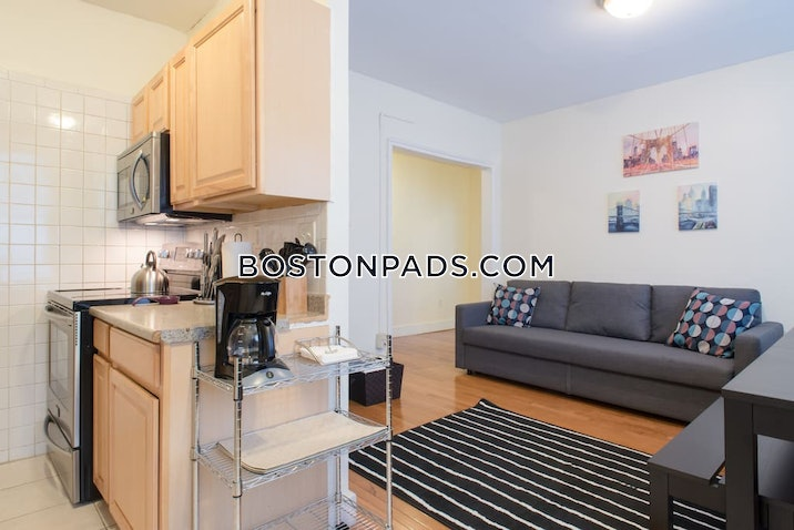 allstonbrighton-border-apartment-for-rent-2-bedrooms-1-bath-boston-2495-587660