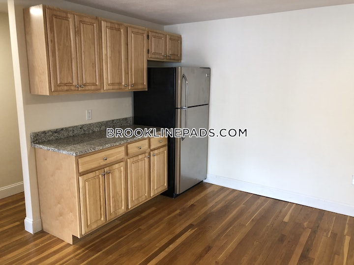brookline-apartment-for-rent-1-bedroom-1-bath-boston-university-2200-603921