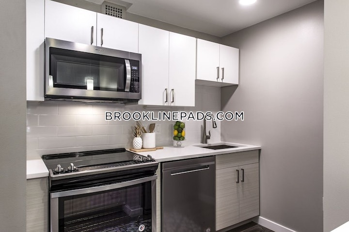 brookline-stunning-luxury-apartment-brookline-village-5030-565754