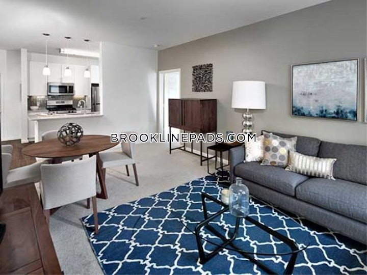 brookline-apartment-for-rent-1-bedroom-1-bath-chestnut-hill-3405-520602