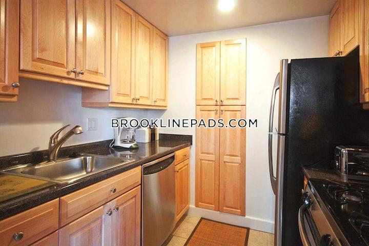 brookline-apartment-for-rent-2-bedrooms-15-baths-chestnut-hill-3220-504839
