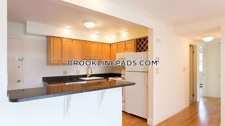 brookline-apartment-for-rent-1-bedroom-1-bath-chestnut-hill-2275-3804402