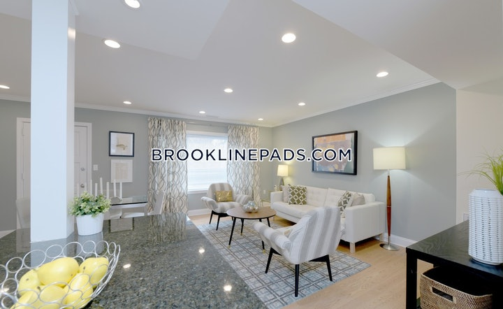 brookline-apartment-for-rent-2-bedrooms-1-bath-chestnut-hill-3140-522233