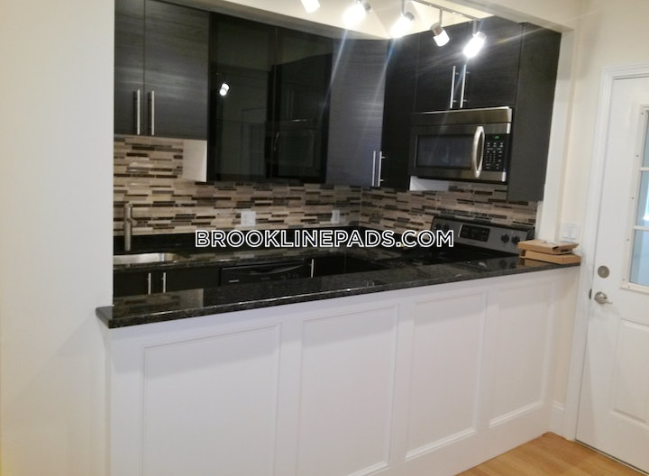 brookline-apartment-for-rent-4-bedrooms-2-baths-cleveland-circle-4300-505276