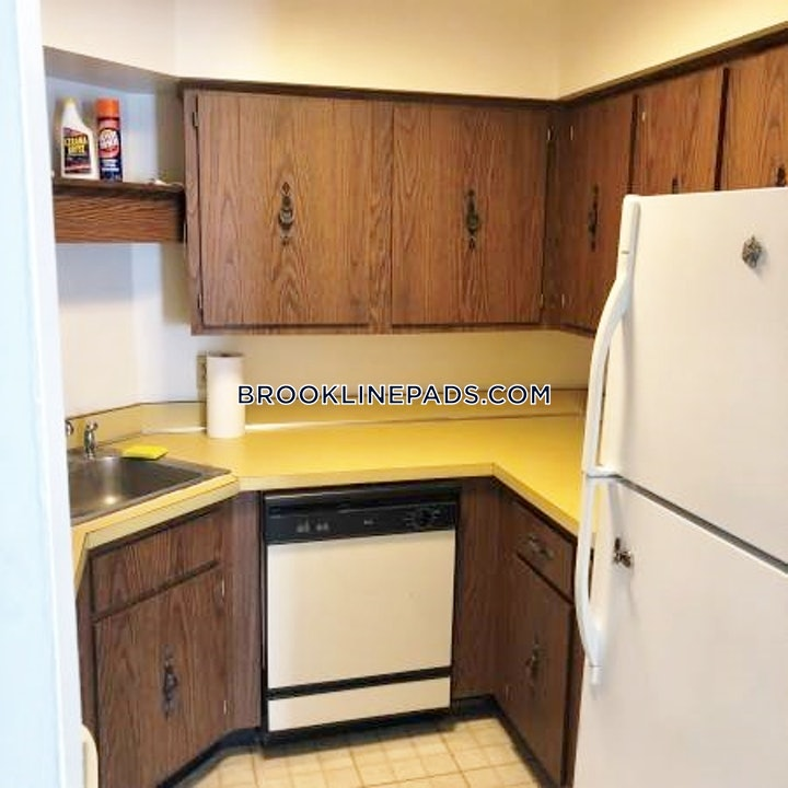 brookline-beautiful-2-bedroom-apartment-available-for-rent-coolidge-corner-2300-467694