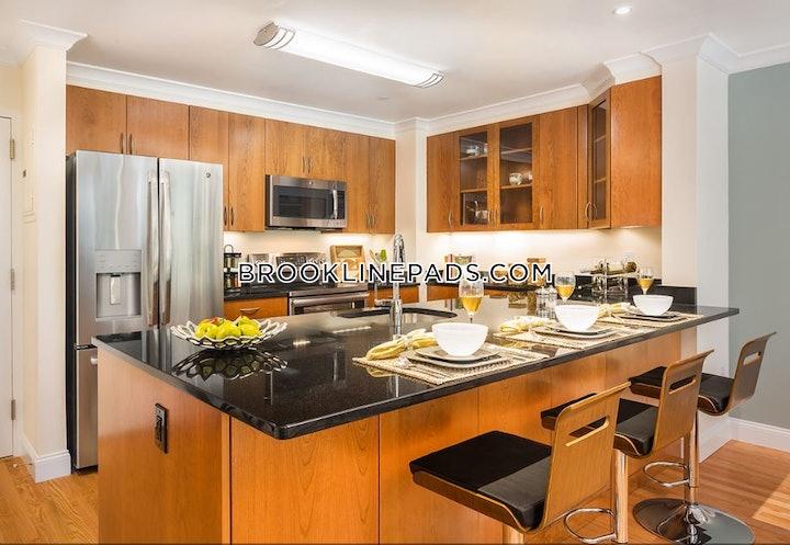 brookline-stunning-luxury-apartment-coolidge-corner-5950-565749