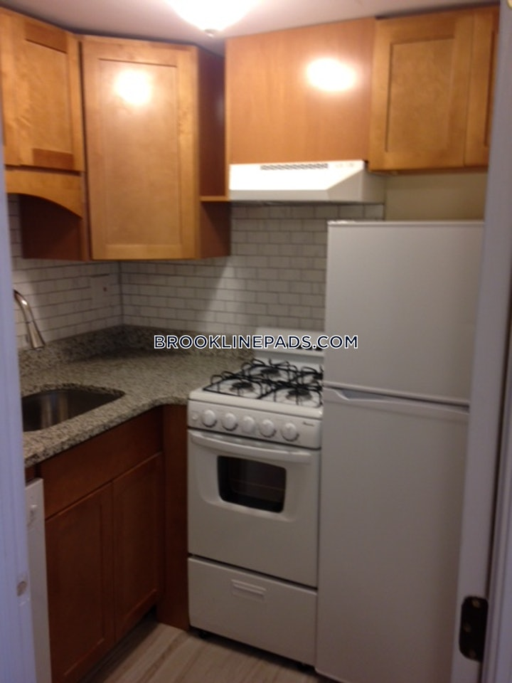 brookline-apartment-for-rent-studio-1-bath-longwood-area-1850-493441