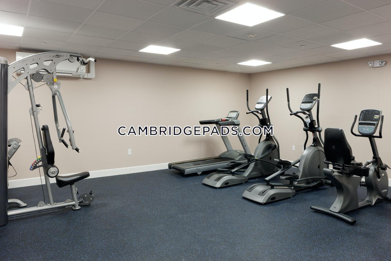 CAMBRIDGE - DAVIS SQUARE - $3,550