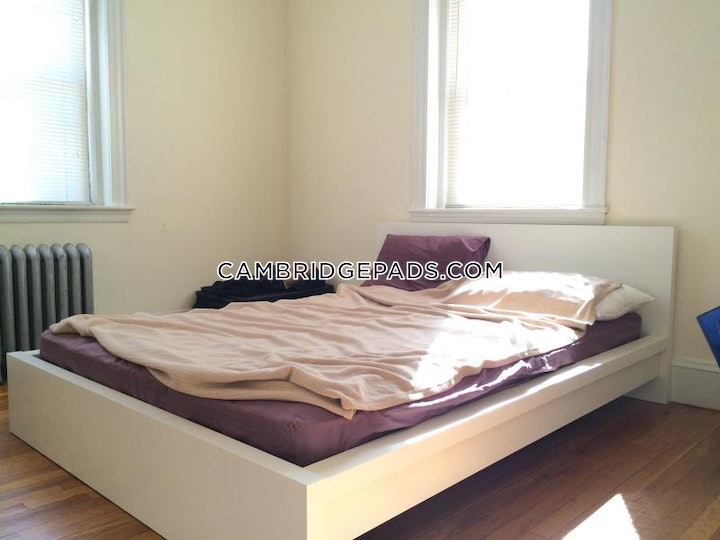 cambridge-apartment-for-rent-2-bedrooms-1-bath-harvard-square-2700-48850