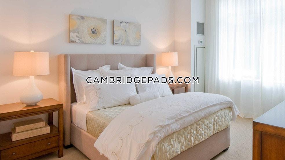 Third St. Cambridge