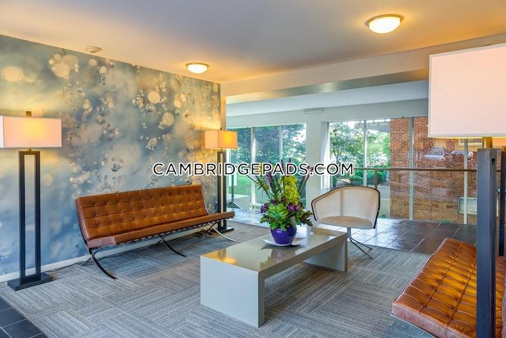 cambridge-apartment-for-rent-2-bedrooms-1-bath-kendall-square-2730-617033