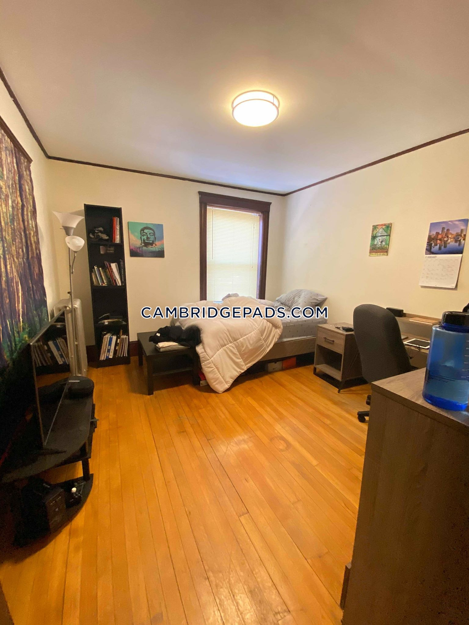 Cambridge - $3,800