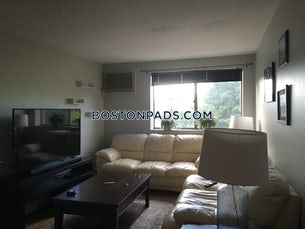 somerville-apartment-for-rent-1-bedroom-1-bath-magounball-square-2275-480735