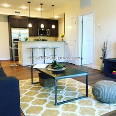 somerville-recently-renovated-2-bed-2-bath-unit-in-somerville-winter-hill-3200-442151
